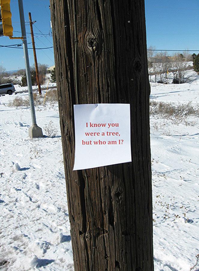 https://www.paulacastilloart.com/wp-content/uploads/2011/06/Castillo_Letters-to-Dead-Trees.jpg